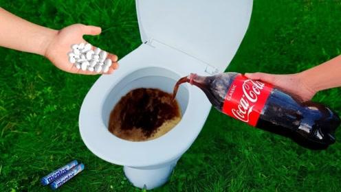 可乐曼妥思倒进马桶里,可以自制出喷泉吗?结果让人意外!