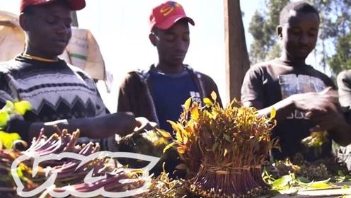 世界上最贫穷的国家只吃草,原来还有门道所在