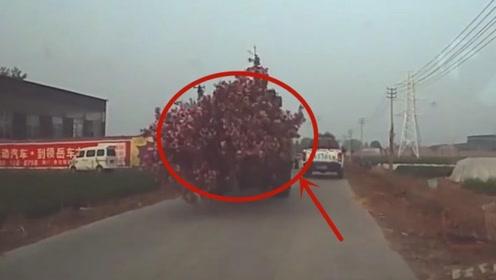 司机看到这挖土机过来,无助的想哭:这也太不靠谱了!