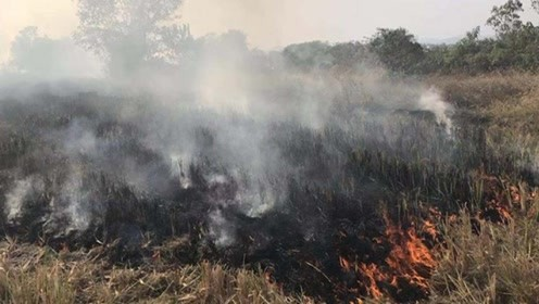 警惕!烧秸秆引发田地大火 消防村民齐救火 忙了快仨小时