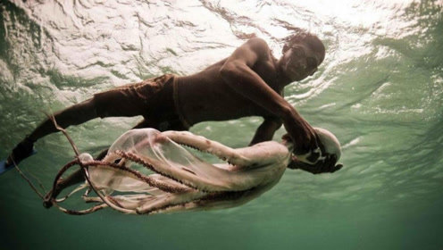 """海上神秘的种族,为了生计,他们""""进化""""出不一样的身体"""