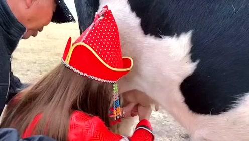 小姐姐第一次体验挤牛奶,一松一紧就是学不会