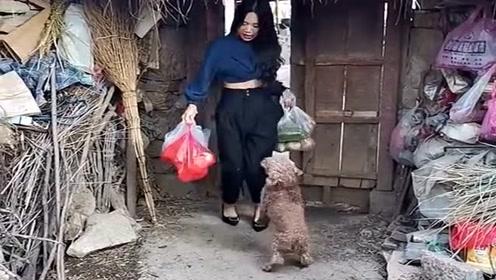 美女又来看留守老人了,还买了许多零食送给流浪狗,真是人美心善!