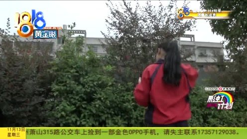 """2019浙商银行彩虹计划 : 罗水苹:总是独自哭泣的""""尖子生"""""""