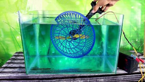 旋转的风扇放水中会怎样?老外作死实验,接触的瞬间大开眼界!