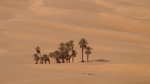 """""""夺命""""沙漠,已经将近5000人在这里丧命,旅游别去这里送命"""
