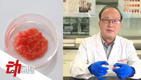 中国第一块人造培养肉来了:培养干细胞20天 产出5克肉