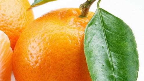 用橘子皮美白牙齿的小妙招,让你牙齿洁白清香,长期坚持还有固齿的作用