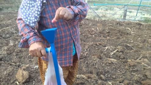 50岁阿姨发明简易玉米播种机,一天轻松播种10亩地,5块钱造一个