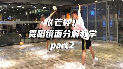 年会舞蹈推荐!中国风《芒种》舞蹈教学 第二部分