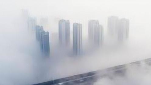 冰清和你聊聊天丨回头长望茫茫处,不见楼宇见尘雾