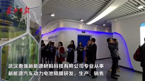 抓机遇 谋发展|揭秘武汉中日产业园,是这样的格局!