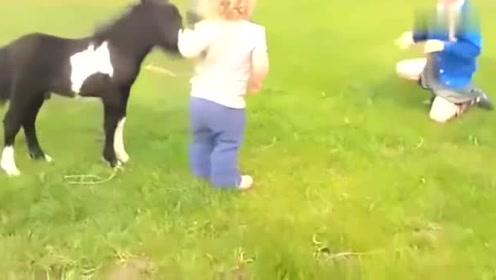 小萌娃给小马一个拥抱,接下来小马的反应,超级暖心!