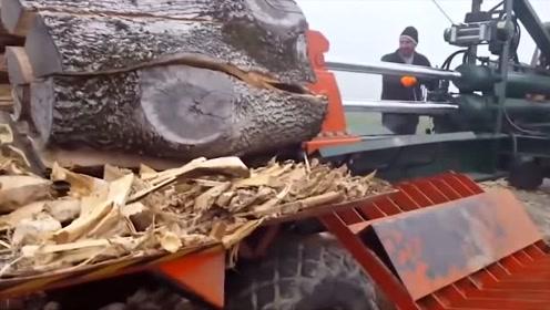 科技探秘:国外的劈柴机还真是发达!这次总算是见识到了