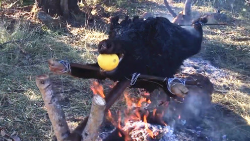 外国人吃肉的方式就是豪气,野猪不刮毛整头烤,一块一块割下来吃