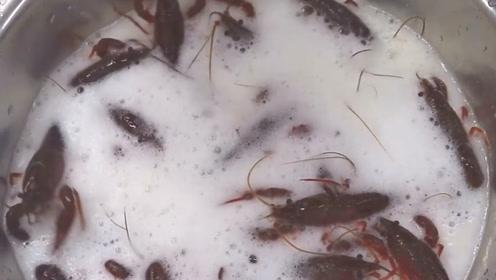 小龙虾经过高度酒浸泡后,竟吐出了很多脏东西,现在你还敢吃吗?