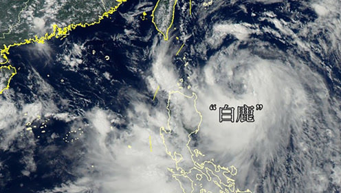"""台风""""白鹿""""登陆台湾 多地迎狂风大雨海边掀起数米巨浪"""