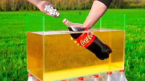 将可乐和曼妥思倒进油里,还会发生剧烈反应吗?结果意外发生了!