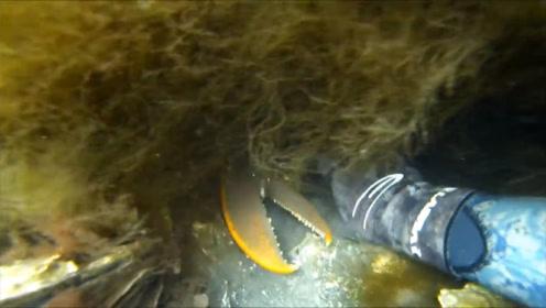 潜水员在海底潜水,发现洞口有个大钳子,用手拖出来看清后赚大了