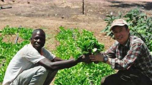 非洲人说他们的土地不适合耕种,中国人到非洲后瞬间打脸!