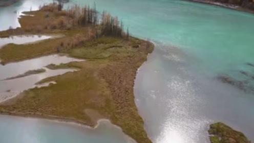 """新疆湖泊发现巨型""""水怪"""",牛羊突然消失,专家在湖中找到真相"""