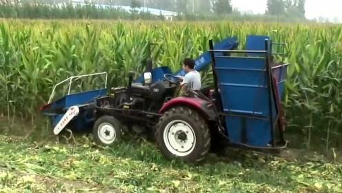 农业的机械化到啥水平了?我国河南的自动掰玉米机