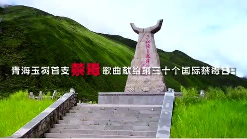 守护(6.26青海玉树藏族首支禁毒公益主题曲) -华语群星