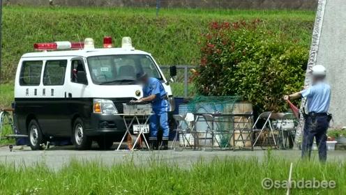 日本交警这样的处罚引起了非议,到底是白色还是黑色汽车超速呢?