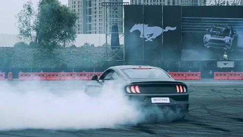 "Mustang Day激情释FUN,""飙""出传奇"