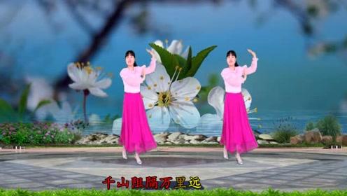 金曲广场舞《新白娘子传奇》40步,好听更好看