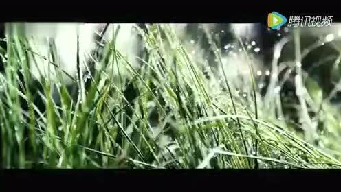 北京赛车pk10投注网站稳赢Q群(3399222)pk10开奖直播视频记录