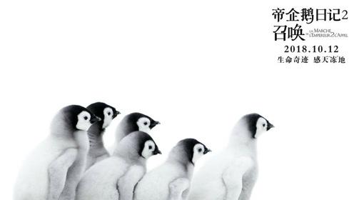 《帝企鹅日记2》定档预告 奥斯卡最佳纪录片再启程