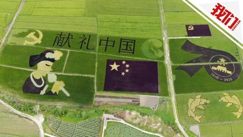 航拍:村民种30亩彩色稻田献礼大庆 巨型国旗场面壮观