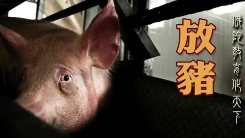 09.放猪 陈大惠老师