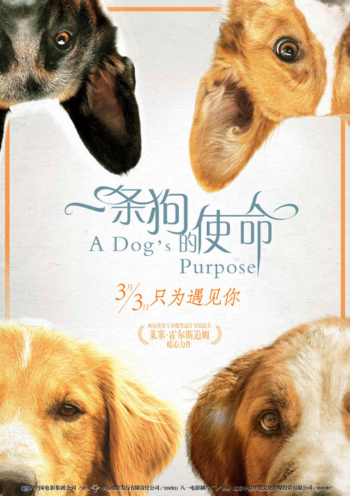 WEB-720P 一条狗的使命 A Dog's Purpose.2017.杜比AC3音频[2.93GB]