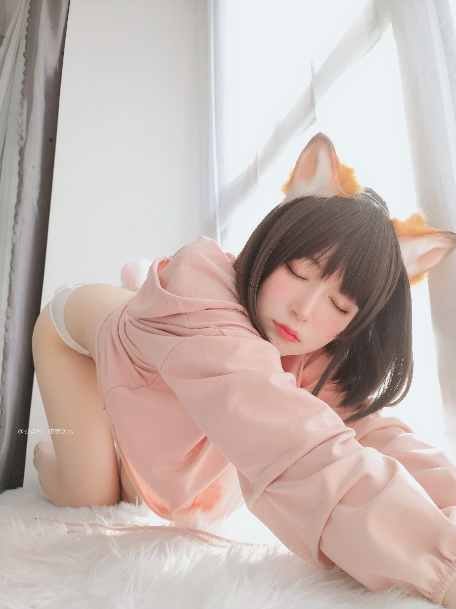 图片[17]-美图-粉色小猫-大鹏资源网