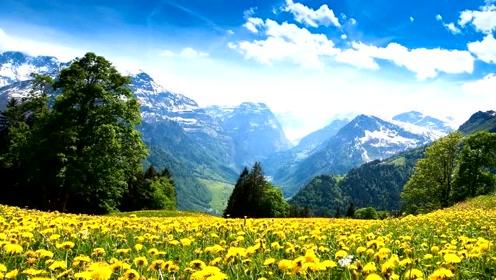 風景如畫的大自然,各種美好的景象,數不勝數