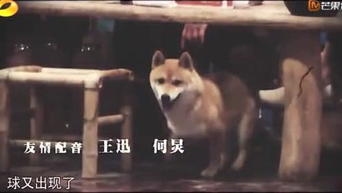 小h电影_黄导在导电影\